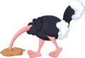 Ostrich cartoon has buried a head in sand Royalty Free Stock Photo