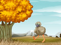 An ostrich near the big tree illustration of Stock Photography