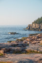 Otter Cliffs in the background with slabs of Pink Granite Rocks