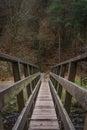 Oude houten voetgangersbrug met forest foliage in background Stock Afbeelding