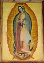 Our Lady of Guadalupe, St. Patrick`s Cathedral Royalty Free Stock Photo