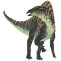 Ouranosaurus Herbivore Dinosaur Royalty Free Stock Photo