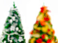 Out of focus Christmas trees Stock Image