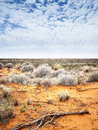 Outback Stock Images