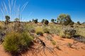 Outback australia pilbara region western Royalty Free Stock Photo