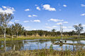 Outback billabong queensland australia lovely peaceful in Royalty Free Stock Images