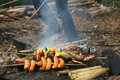 Outdoor barbecue an in a garden Stock Image