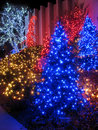 Outdoor Christmas Tree Display Royalty Free Stock Images