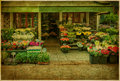Outdoor flower shop in Paris, France Royalty Free Stock Photos
