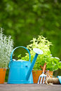 Outdoor gardening tools on wood terrace Stock Photo