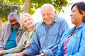 Outdoor group portrait of senior friends happy talking to each other Royalty Free Stock Photos