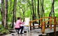Outdoor painting Royalty Free Stock Photo