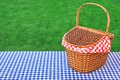 Outdoor rustic picnic table with hamper and blue tablecloth checkered on the lawn in the park rest area breaking concept Royalty Free Stock Photo