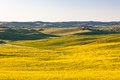Outdoor tuscan val d orcia green and yellow fields horizontal shot Stock Photography