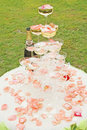 Outdoor wedding reception overview Royalty Free Stock Image
