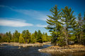 Outdoor wilderness lake forest landscape the rocky shores of a canadian in an ontario evergreen Royalty Free Stock Photography
