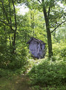 Outhouse in forest lush green Stock Image