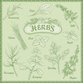 Outline Herbs Set Stock Image