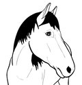 Outline horse on white background Royalty Free Stock Photos