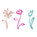 Outlined flower collection hand drawn Royalty Free Stock Images