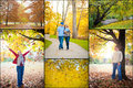 Outside in the Fall Collage Royalty Free Stock Image