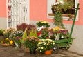 Outside florist shop a autumn still life Royalty Free Stock Image