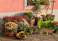 Outside florist shop a autumn still life Royalty Free Stock Photo