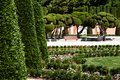 Outstanding cypress trees in retiro park in madrid spain Stock Images