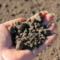 Over-dried soil Royalty Free Stock Photo