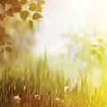 Overcoast summer backrounds Royalty Free Stock Photo