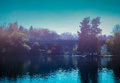 overfiltered artistivc blue foggy autumn morning on the lake Royalty Free Stock Photo