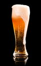 Overflowed glass fresh lager beer black reflection Royalty Free Stock Photos