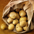Overflowing bag of potatos Royalty Free Stock Photo