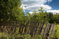 Overgrown garden and a rickety fence Royalty Free Stock Photo
