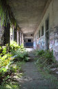 Overgrown hallway the upstairs of the annie lytle school in jacksonville fl Stock Photo