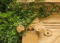 Overgrown ionic capital a on a war memorial with ivy Stock Image