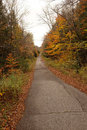 Overgrown old road subtle muted colors of late autumn on roadway Stock Images