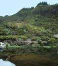 Overgrown riparian scenery waterside landscape at sao miguel island the biggest island of the azores archipelago a group of Stock Photo