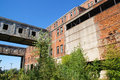 Overgrown ruins of old factory Royalty Free Stock Photo