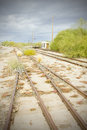 Overgrown tracks Royalty Free Stock Photo