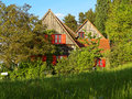 Overgrown wooden house in forest at spring Royalty Free Stock Photo