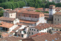 Overview at the old part of lucca on italy Royalty Free Stock Images