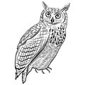 Owl bird head symbol for mascot or emblem design, logo vector illustration for t-shirt tattoo design. Royalty Free Stock Photo