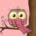 Owl on a brunch