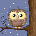 Owl on a brunch cute stars background Stock Photo
