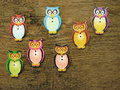 Owl buttons colorful on wooden background Stock Photography