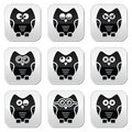 Owl cartoon character buttons set decorative black with reflection isolated on white Stock Photos