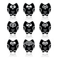 Owl cartoon character icons set decorative black with reflection on white Stock Photography