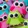 Owl cookies array of colorful Stock Photos