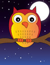Owl cute red standing on branch in moonlight Royalty Free Stock Photo